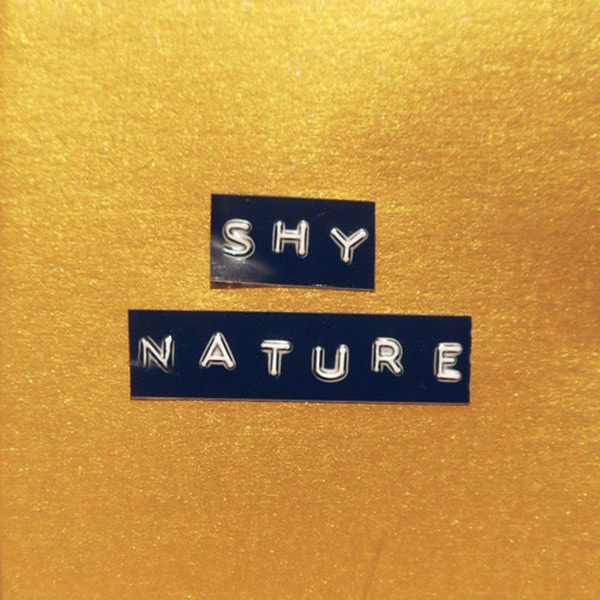 Shy Nature - Sweet Winter Rain