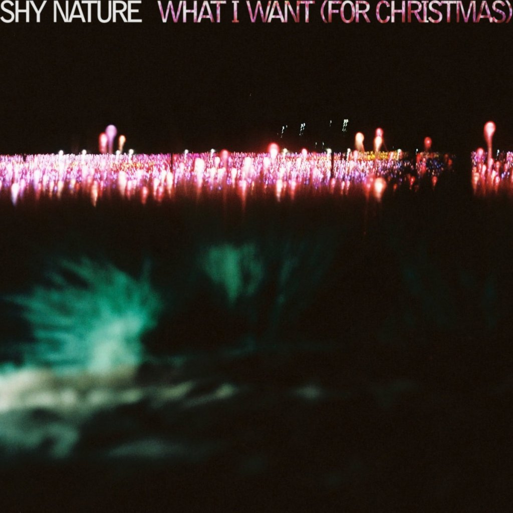 Shy Nature - What I Want (For Christmas)